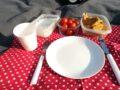 cuketové placky na pikniku, červené prostírání, vybavení piknikového batohu